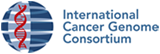 International Cancer Genome Consortium
